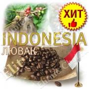 Кофе Лювак Luwak Premium (дикий) в зернах