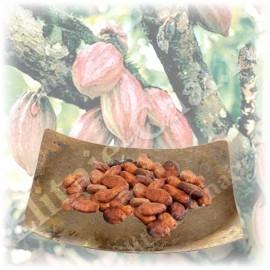 Какао бобы высокой категории качества