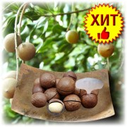 Орех Макадамия в скорлупе, натуральный (Macadamia Organic)