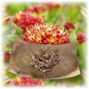 Родиола розовая (золотой корень) высокой категории качества