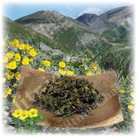 Курильский чай высокой категории качества