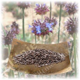 Семена Чиа высокой категории качества