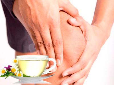 Лечение гастрита и язвенной болезни народными средствами